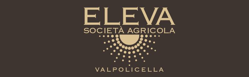 Eleva Vino Amarone Valpolicella